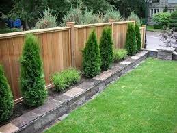 Best 25 Landscaping Along Fence Ideas On Pinterest  Garden Plant Ideas For Backyard