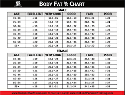 Body Fat Chart Clever Hippo