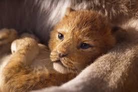 Resultado de imagem para elenco de rei leão live action