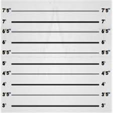 Height Chart Blank Hd Wallpapers Printable Blank Height Chart High Resolution Mdvwi Cricket