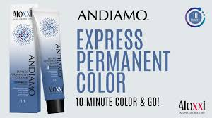 Successfully Cover Grey Hair In 10 Minutes With Aloxxi S Andiamo Express Permanent Color