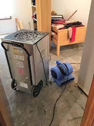importance of a basement dehumidifier
