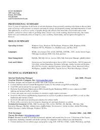 Sample Resume With Summary Resume Summary Of Skills Sample Resume Summary Of Skills Madratco 14
