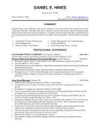 Mesmerizing It Director Resume Skills With Marketing Manager Resume