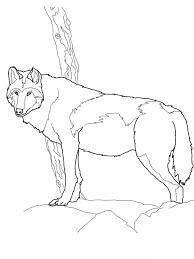 Wolf Template - Animal Templates   Free & Premium Templates