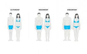 De drie typen lichaamsbouw en hoe te trainen - manners