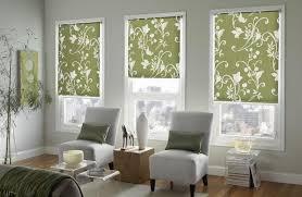 shades for front doorIncredible Front Door Roman Shade and Interesting Window