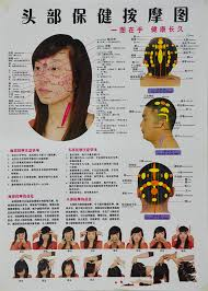 Quick Study Academic Charts China Acupressure Quick Study Academic Outline Head And