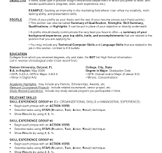 Resume Maker Online Free Freectional Resume Builder Technical Project Manager Computers 43