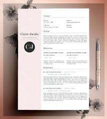 Resume Design Sample Resume Website Theme Example Profile And Resume ...