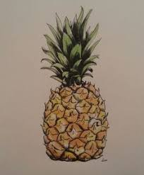 realistic pineapple drawing. most popular tags for this image include: fruit, graphic, pineapple, drawing and realistic pineapple