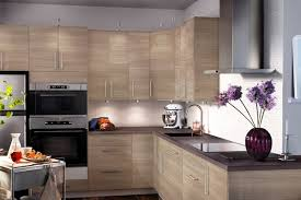 Ikea White Kitchen Cabinets Mesmerizing Ikea Kitchen Cabinet Photo