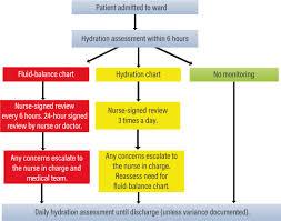 Fluid Balance Chart Audit Tool Assessing And Documenting Fluid Balance