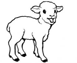 Small Picture Sheep Coloring Pages for Preschool Preschool and Kindergarten