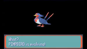 Pokemon Sapphire Part 10 Swellow Evolves