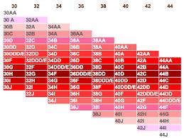 34dd Size Chart Bra Sister Size