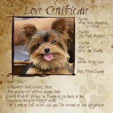 dog birth certificates