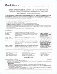 Technical Skills List For Resume Fascinating Skills To List In A Resume Best Of List Skills To Put A Resume New