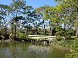 file japanese garden hermann park houston bridge in 2016 jpg