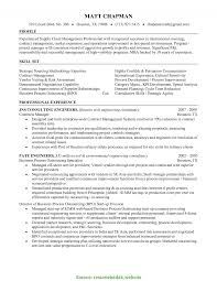 Special Real Estate Development Project Manager Resume Assistant