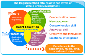 Whole Brain Child Chart The Heguru Method Is A Proven Method Of Education For Right