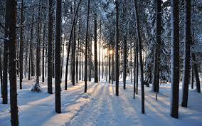 background images landscape winter. Plain Landscape Download Intended Background Images Landscape Winter