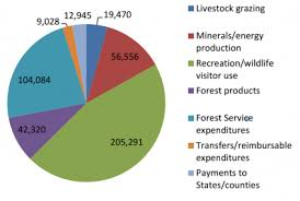 Budget Performance Us Forest Service