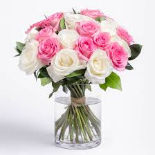 roses pink and white rose bouquet