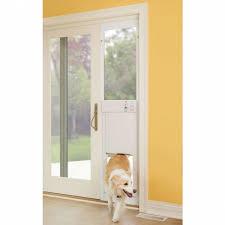 exquisite home depot door with dog 37 petsafe freedom patio panel pet fresh unusual doors for sliding glass of