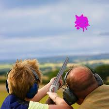 details about diy clay pigeon fill gender reveal holi color skeet powder shooting target pink