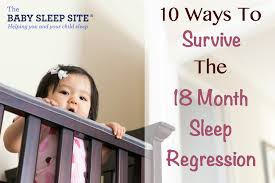 18 Month Old Toddler Sleep Regression Toddlers The Baby