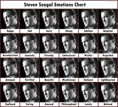 Steven Seagal Emotion Chart Poster 10 Expository Steven Seagal Emotion Chart