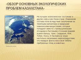 Реферат на тему Экологические проблемы малых водных систем Река  Экологические проблемы рек реферат