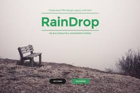 Raindrop A Multipurpose Theme Wordpress Business Themes