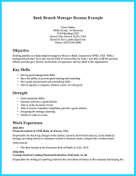 Bank Manager Job Description Resume Bank Branch Manager Resume Beautiful Business Skills