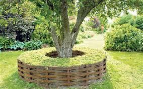 tree seats garden furniture.  Seats Dominic Watts And His Garden Designer Wife Lucy Redmanu0027s Seat Of Woven  Hazel Around Their To Tree Seats Garden Furniture