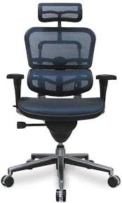 most comfortable computer chair. Ergohuman-full-mesh-chair-one-of-the-best- Most Comfortable Computer Chair W