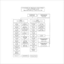 School Organizational Chart Template Smartasafox Co