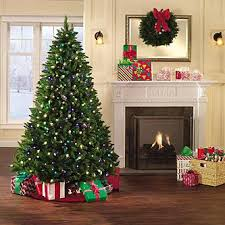 Finding The Perfect Christmas Tree  Treasures And Musings Sear Christmas Trees