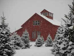 farm barn. Our Family Farm Since 1891. Barn