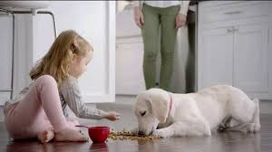 Image result for purina ad