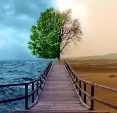 Image result for زندگی تو بهار است زندگی من پاییز