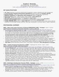 Federal Resume Template Federal Resume Writers Customdraperies 76