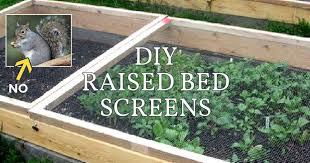 diy raised bed screens to keep pests
