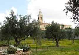 mini photo essay church of the pater noster jeru m church of the pater noster behind a field of olive trees