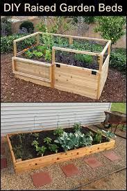 diy raised garden beds vegetable