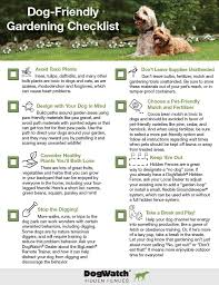 Spring is here at last! Before you start work on your latest gardening  project,. Dog Friendly ...