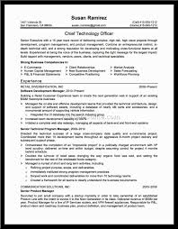 Business Business Analyst Profile Resume