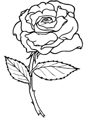 Small Picture Rose Coloring Pages 29212 Bestofcoloringcom