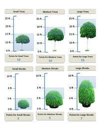 Conducting Tree And Shrub Estimates When And How